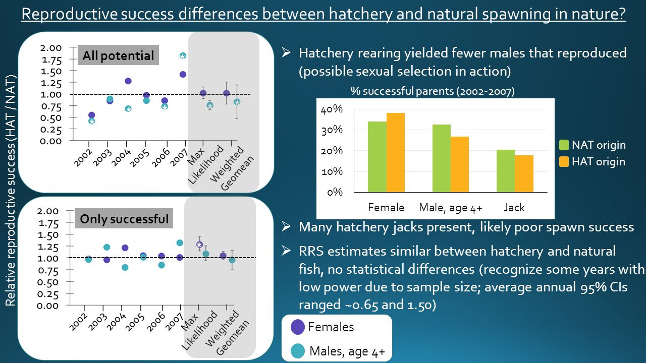 Relative reproductive success (HAT / NAT) Females Males, age 4+  Hatchery rearing yielded fewer males that reproduced (possible sexual selection in a