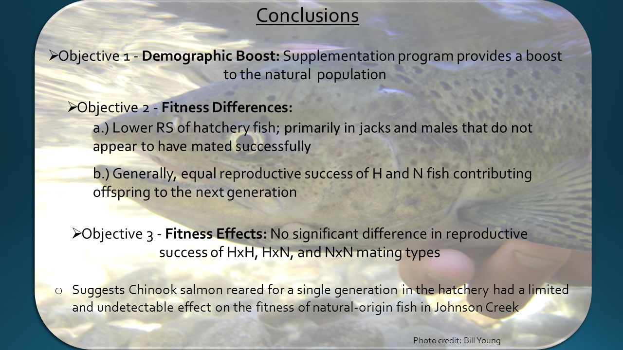  Objective 1 - Demographic Boost: Supplementation program provides a boost to the natural population  Objective 3 - Fitness Effects: No significant