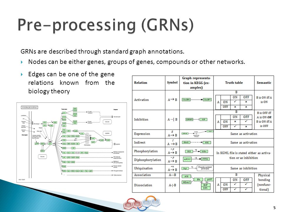 5 GRNs are described through standard graph annotations.