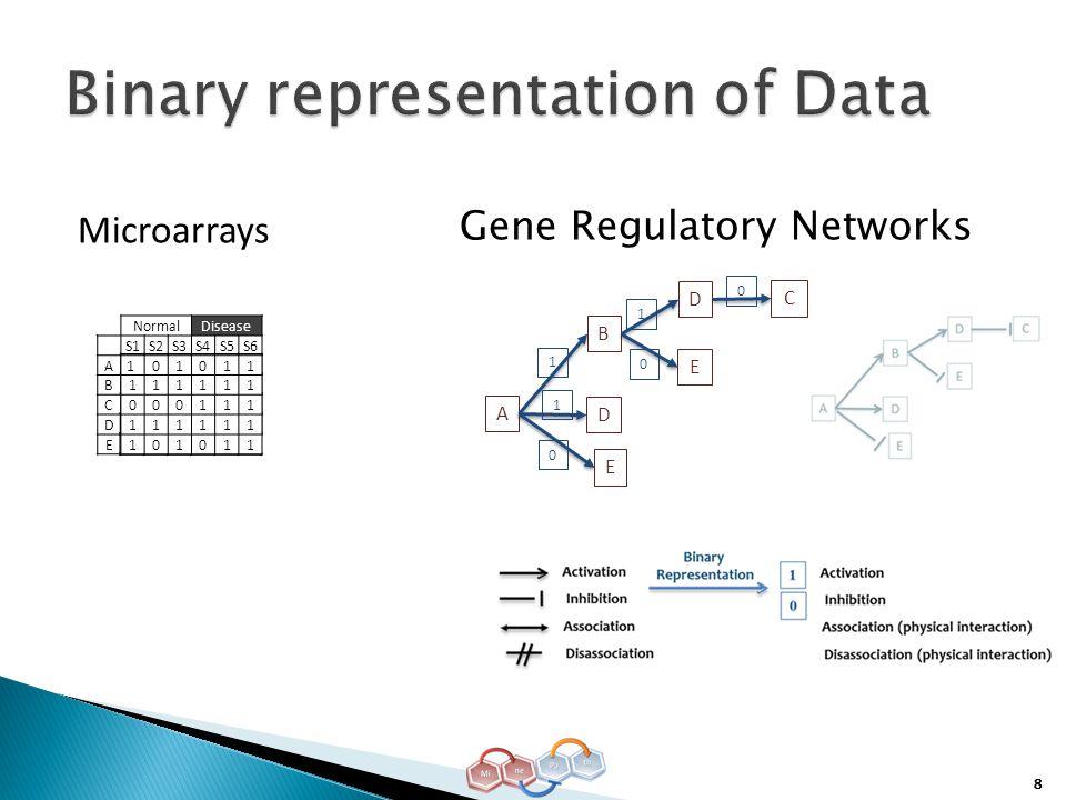 8 101011 111111 101011 101011 111111 000111 111111 NormalDisease S1S2S3S4S5S6 A1 01011 B111111 C000111 D111111 E101011 A D C B E D E 1 1 1 0 0 0 Microarrays Gene Regulatory Networks
