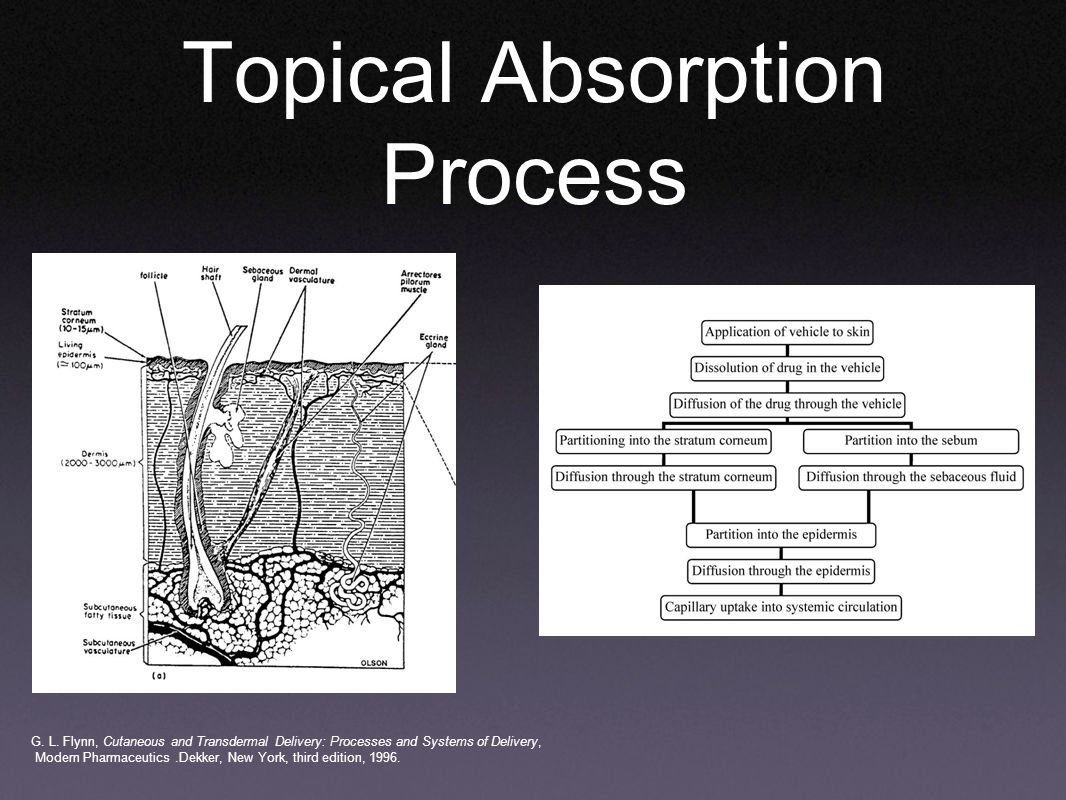 Topical Absorption Process G. L.