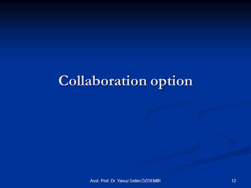 Collaboration option Asst. Prof. Dr. Yavuz Selim ÖZDEMİR12