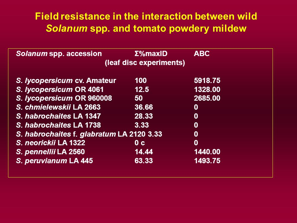 Solanum spp. accessionΣ%maxID ABC (leaf disc experiments) S.