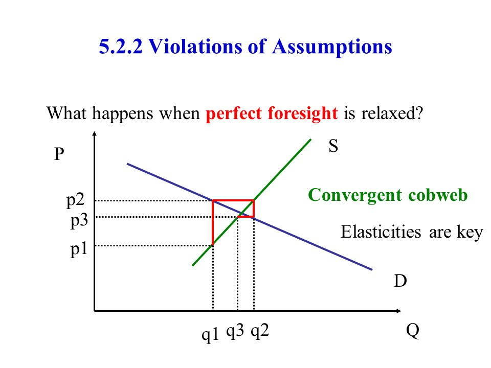 5.2.2 Violations of Assumptions What happens when perfect foresight is relaxed? P Q D S q1 p1 p2 q2 p3 q3 Convergent cobweb Elasticities are key