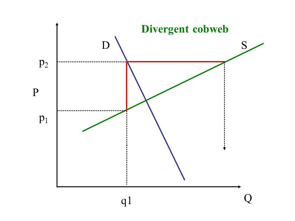P Q DS q1 p1p1 p2p2 Divergent cobweb