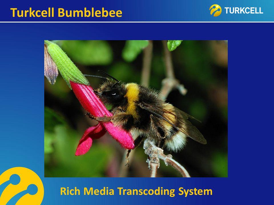 TURKCELL DAHİLİ Turkcell Bumblebee Rich Media Transcoding System