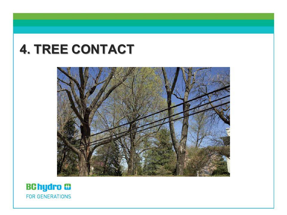 4. TREE CONTACT
