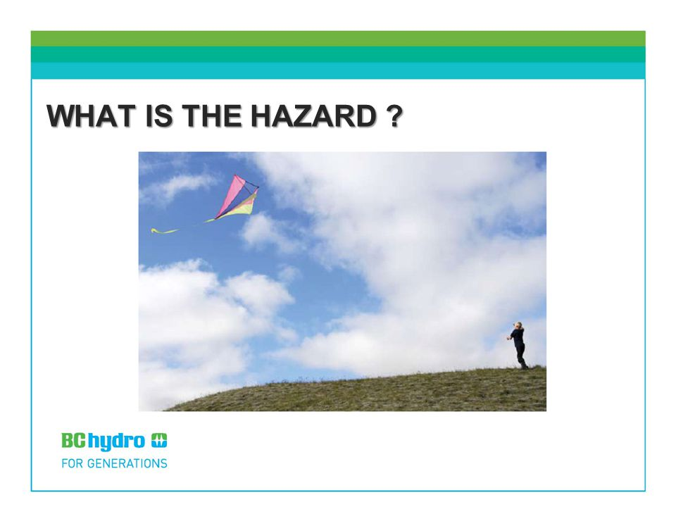 WHAT IS THE HAZARD ?