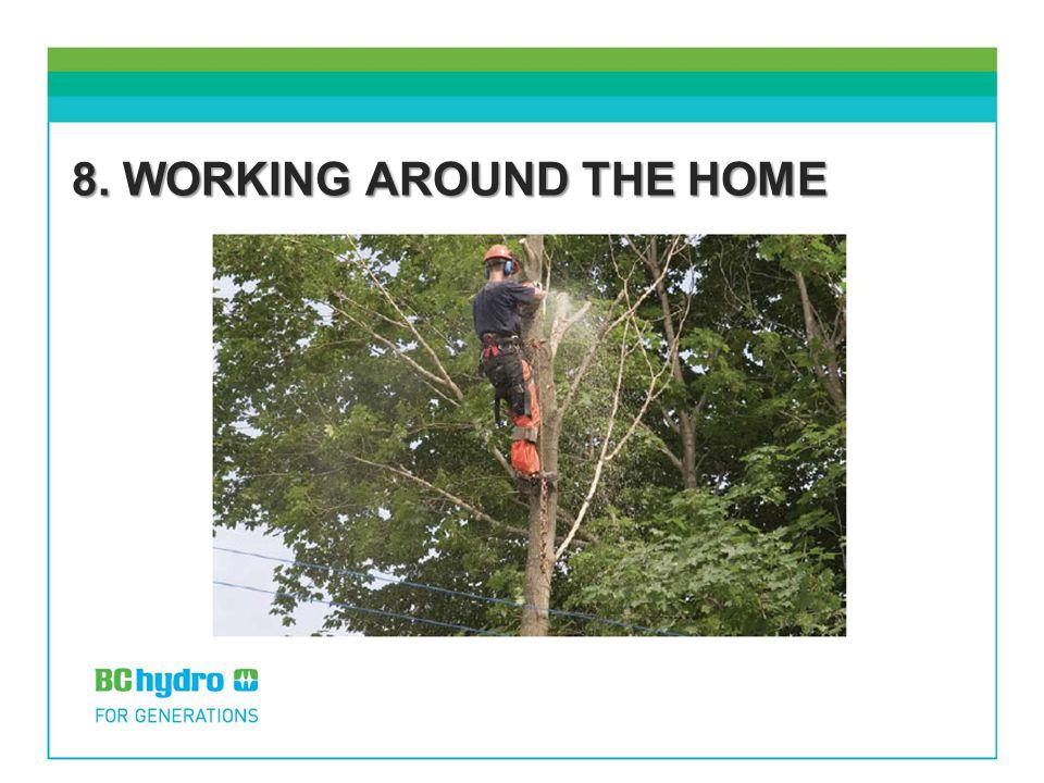 8. WORKING AROUND THE HOME