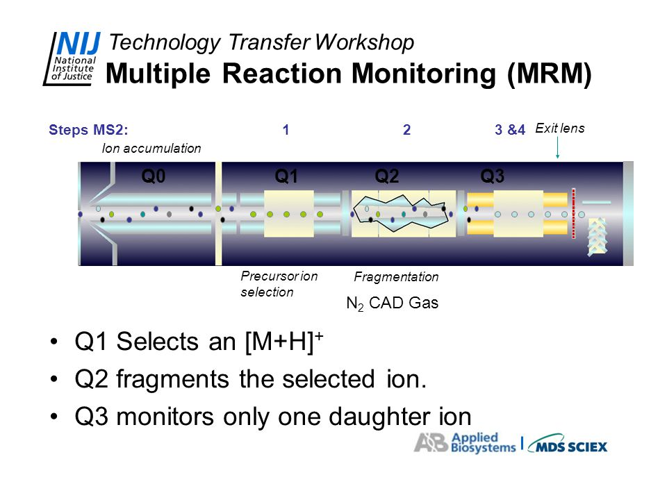 Technology Transfer Workshop Multiple Reaction Monitoring (MRM) Q1 Selects an [M+H] + Q2 fragments the selected ion. Q3 monitors only one daughter ion