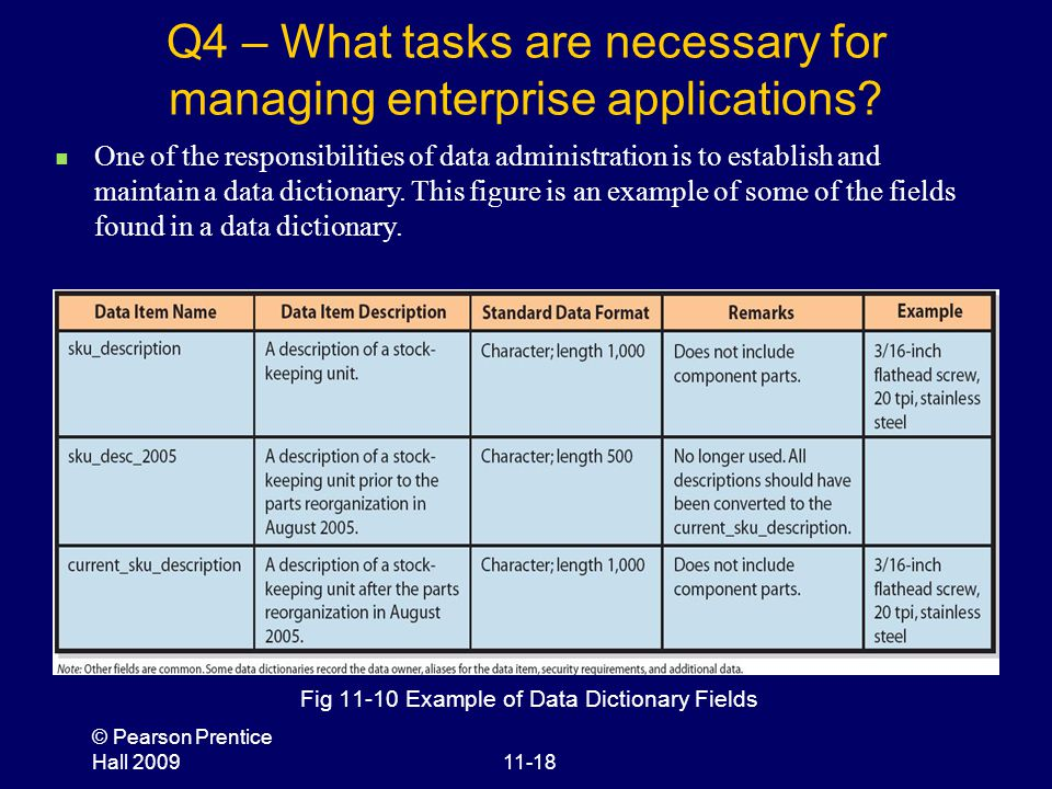 © Pearson Prentice Hall 200911-18 Q4 – What tasks are necessary for managing enterprise applications? Fig 11-10 Example of Data Dictionary Fields One
