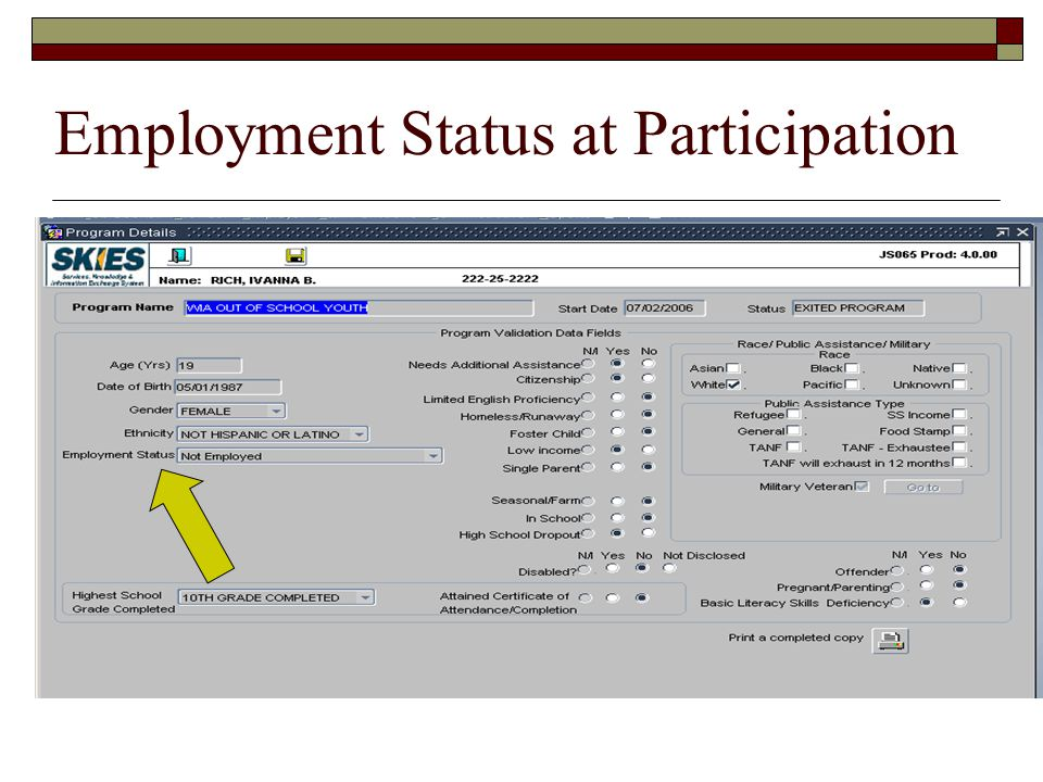 Employment Status at Participation
