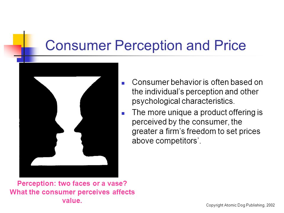 Copyright Atomic Dog Publishing, 2002 Consumer Perception and Price Consumer behavior is often based on the individual's perception and other psycholo