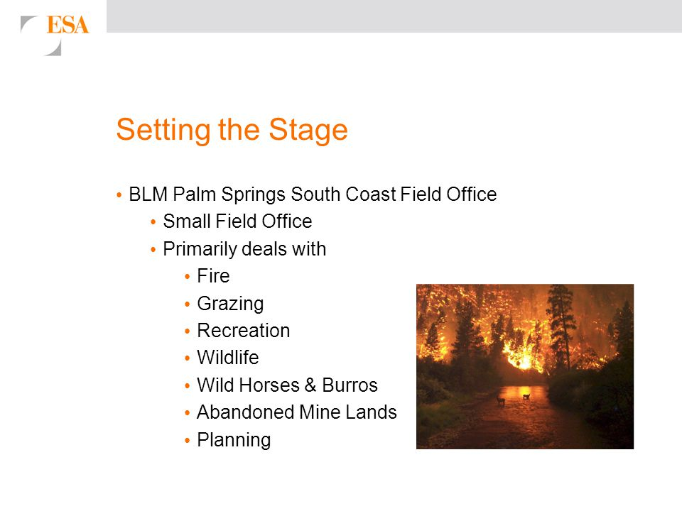 Setting the Stage BLM Palm Springs South Coast Field Office Small Field Office Primarily deals with Fire Grazing Recreation Wildlife Wild Horses & Burros Abandoned Mine Lands Planning