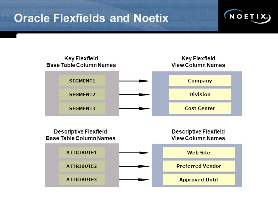 Oracle Flexfields and Noetix Key Flexfield Base Table Column Names SEGMENT1 SEGMENT2 SEGMENT3 Company Division Cost Center Key Flexfield View Column N