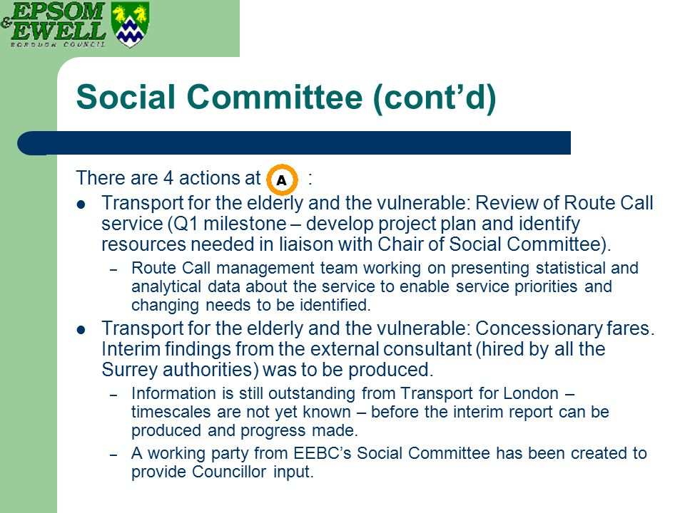 Social Committee (cont'd) There are 4 actions at : Transport for the elderly and the vulnerable: Review of Route Call service (Q1 milestone – develop