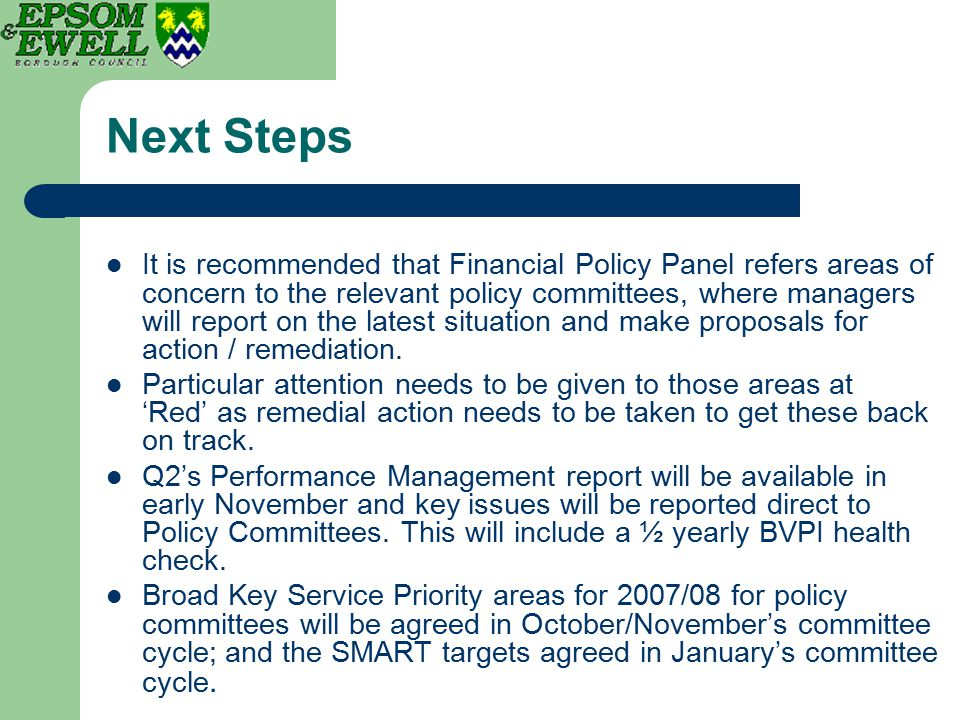 Next Steps It is recommended that Financial Policy Panel refers areas of concern to the relevant policy committees, where managers will report on the