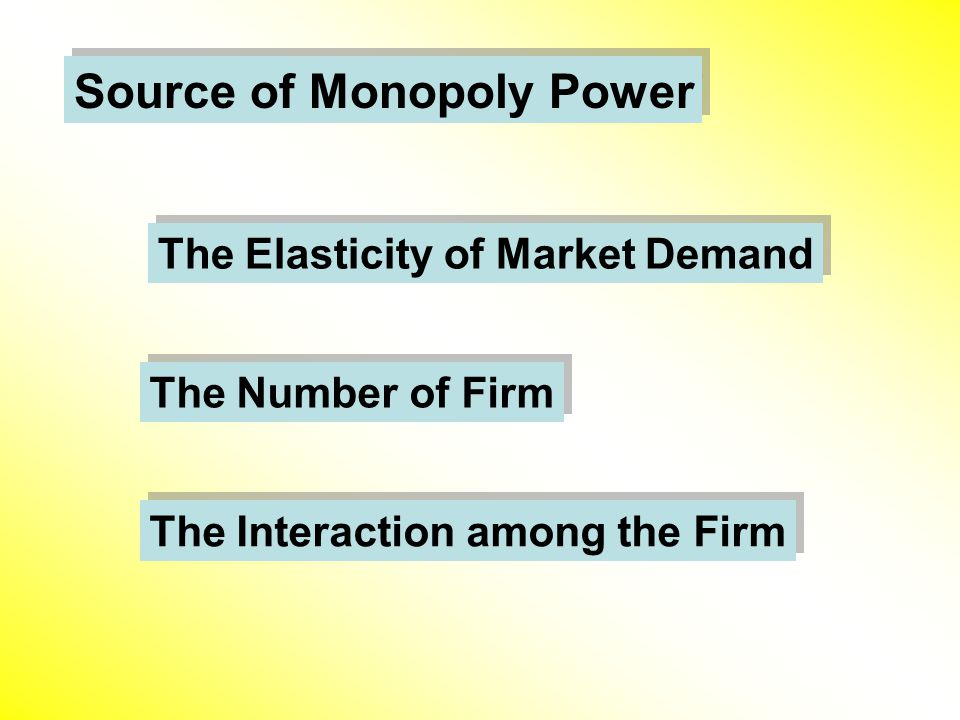 Source of Monopoly Power The Elasticity of Market Demand The Number of Firm The Interaction among the Firm
