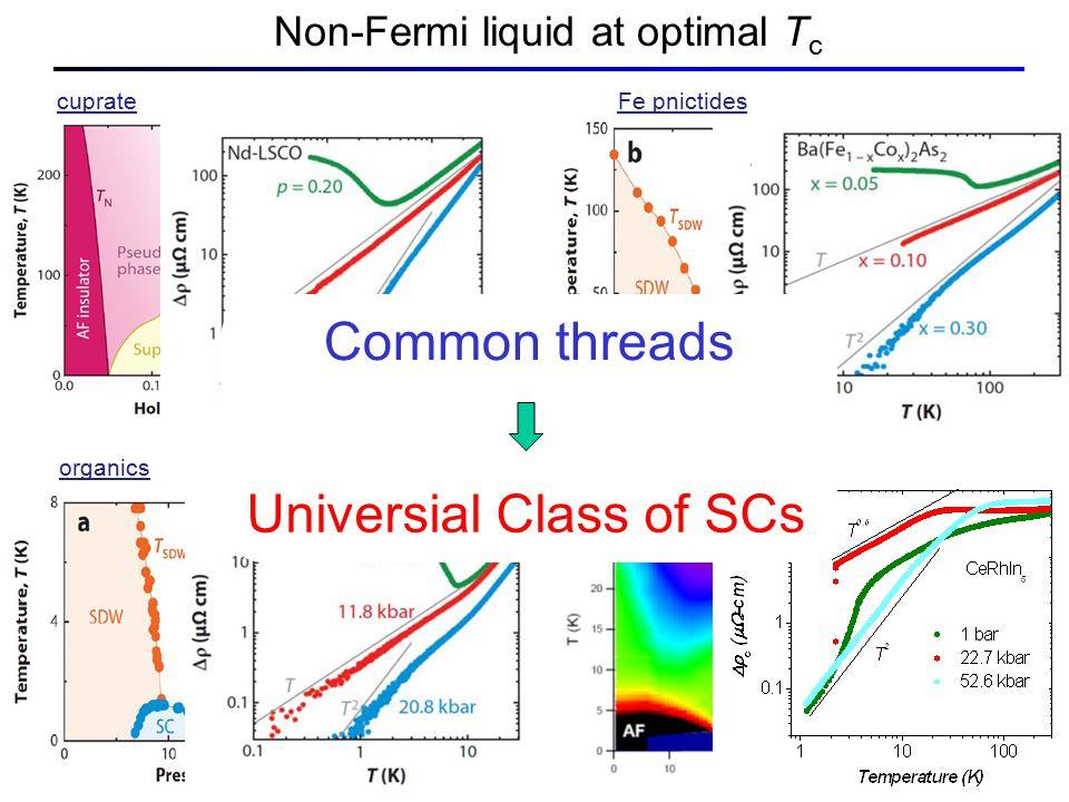 Non-Fermi liquid at optimal T c cuprateFe pnictides organics heavy fermion CeRhIn 5 Common threads Universial Class of SCs