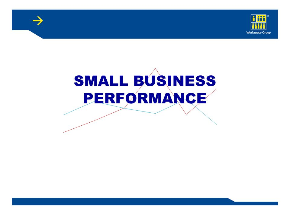 SMALL BUSINESS PERFORMANCE