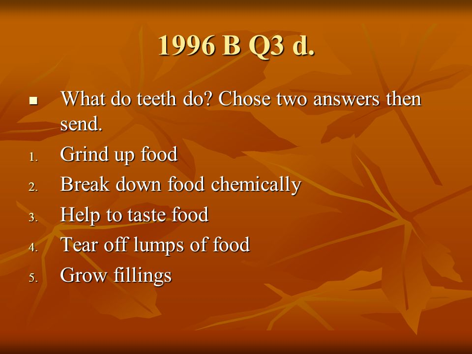 1996 B Q6 Animal A is? Animal A is?