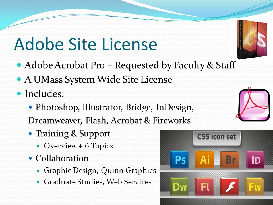 Adobe Site License Adobe Acrobat Pro – Requested by Faculty & Staff A UMass System Wide Site License Includes: Photoshop, Illustrator, Bridge, InDesign, Dreamweaver, Flash, Acrobat & Fireworks Training & Support Overview + 6 Topics Collaboration Graphic Design, Quinn Graphics Graduate Studies, Web Services