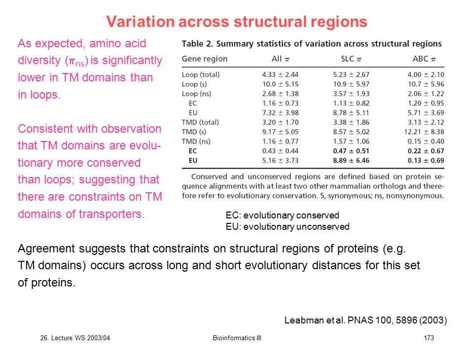 26. Lecture WS 2003/04Bioinformatics III173 Variation across structural regions As expected, amino acid diversity (  ns ) is significantly lower in T