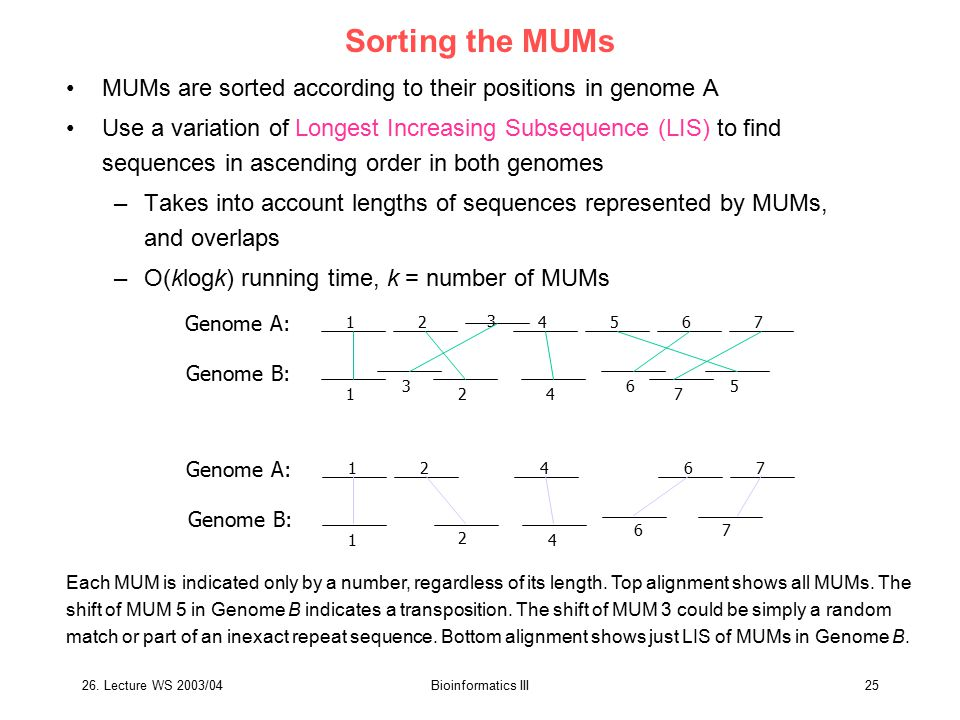 26. Lecture WS 2003/04Bioinformatics III25 Sorting the MUMs MUMs are sorted according to their positions in genome A Use a variation of Longest Increa