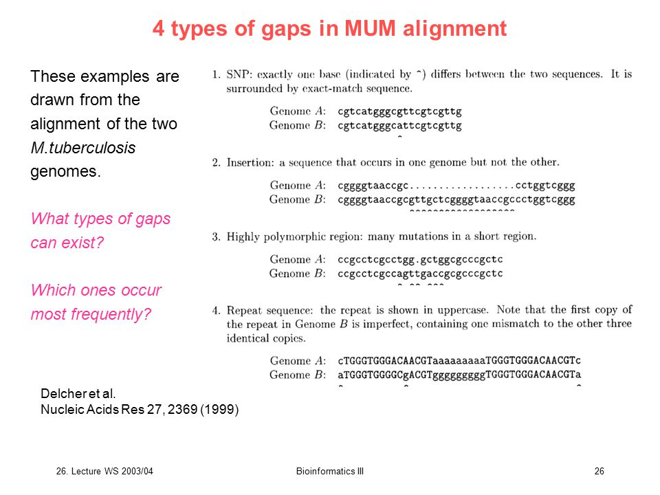 26. Lecture WS 2003/04Bioinformatics III26 4 types of gaps in MUM alignment Delcher et al. Nucleic Acids Res 27, 2369 (1999) These examples are drawn