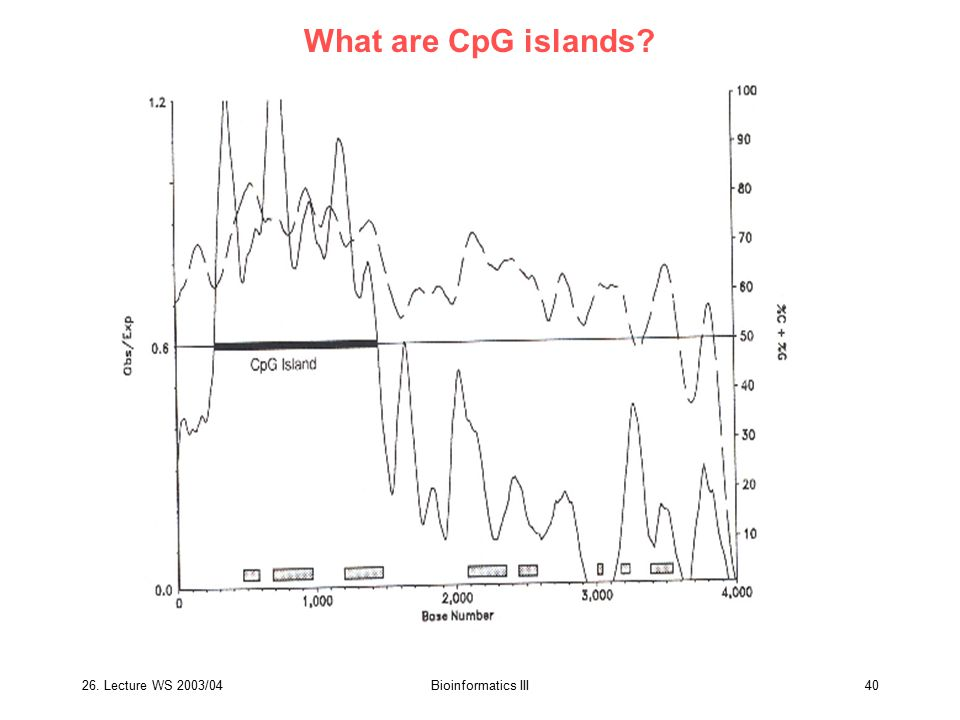 26. Lecture WS 2003/04Bioinformatics III40 What are CpG islands?