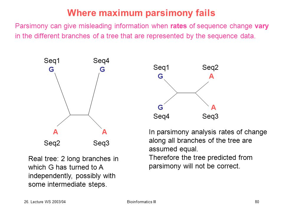 26. Lecture WS 2003/04Bioinformatics III80 Where maximum parsimony fails Parsimony can give misleading information when rates of sequence change vary