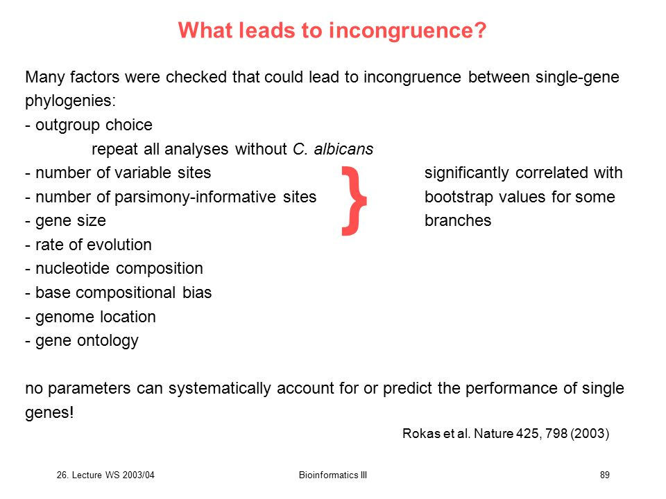 26. Lecture WS 2003/04Bioinformatics III89 What leads to incongruence? Many factors were checked that could lead to incongruence between single-gene p