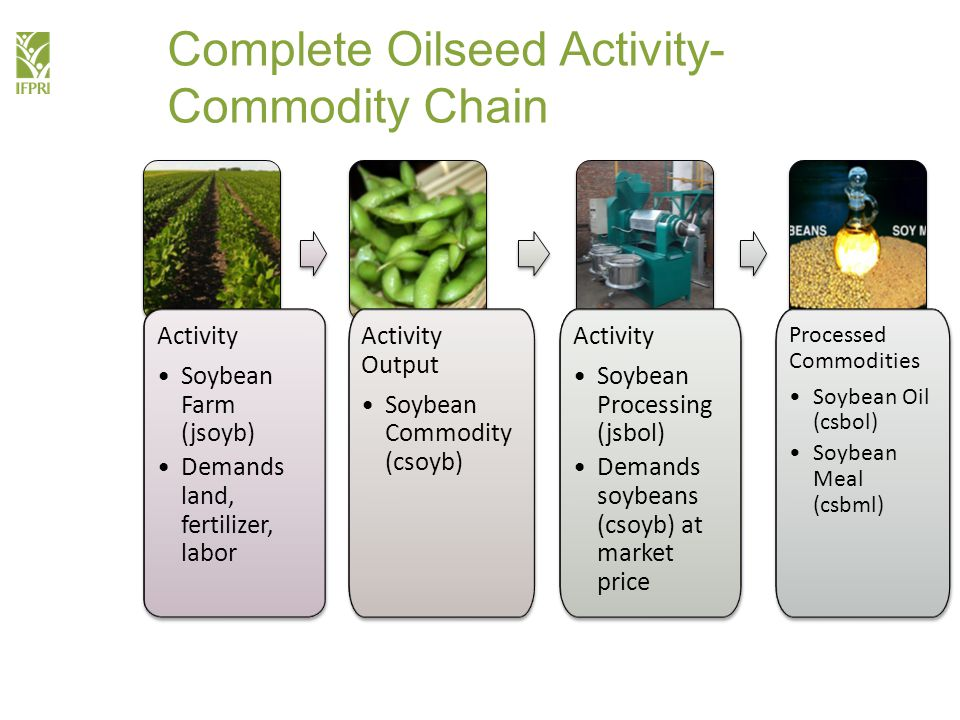 Complete Oilseed Activity- Commodity Chain Activity Soybean Farm (jsoyb) Demands land, fertilizer, labor Activity Soybean Farm (jsoyb) Demands land, fertilizer, labor Activity Output Soybean Commodity (csoyb) Activity Output Soybean Commodity (csoyb) Activity Soybean Processing (jsbol) Demands soybeans (csoyb) at market price Activity Soybean Processing (jsbol) Demands soybeans (csoyb) at market price Processed Commodities Soybean Oil (csbol) Soybean Meal (csbml) Processed Commodities Soybean Oil (csbol) Soybean Meal (csbml)