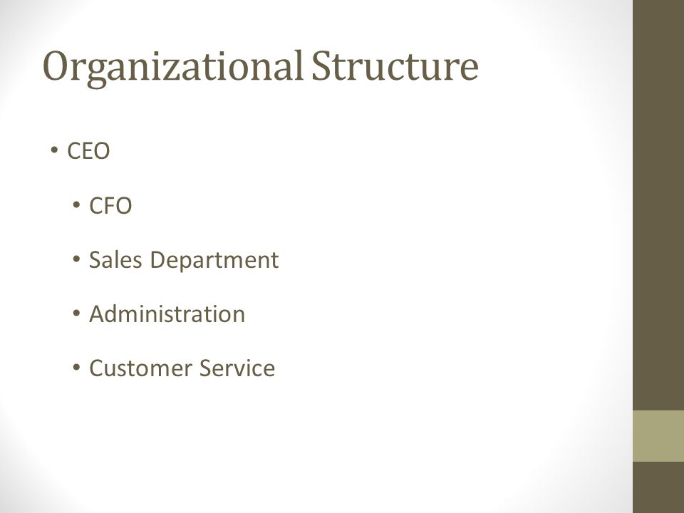 Organizational Structure CEO CFO Sales Department Administration Customer Service