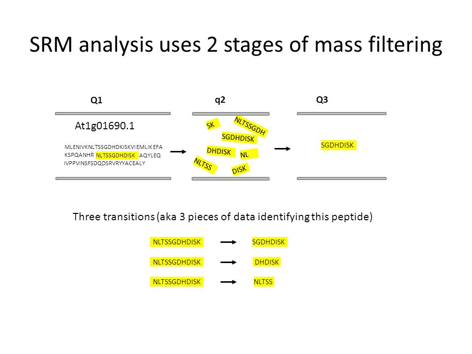 Extract proteins Digest into peptides Basic workflow for SRM analysis Chromatographic separation of peptides (C18 column) ESI Electrospray Ionization Parent ion selection Fragment ion selection Fragmen- tation Q1q2Q3 MS analysis Ion Intensity Time