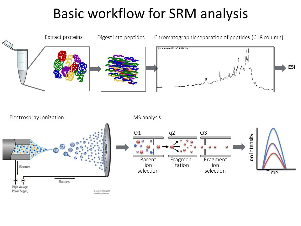 Developing SRM methods Step 0: Successfully resolubilize lyophilized peptide standards.