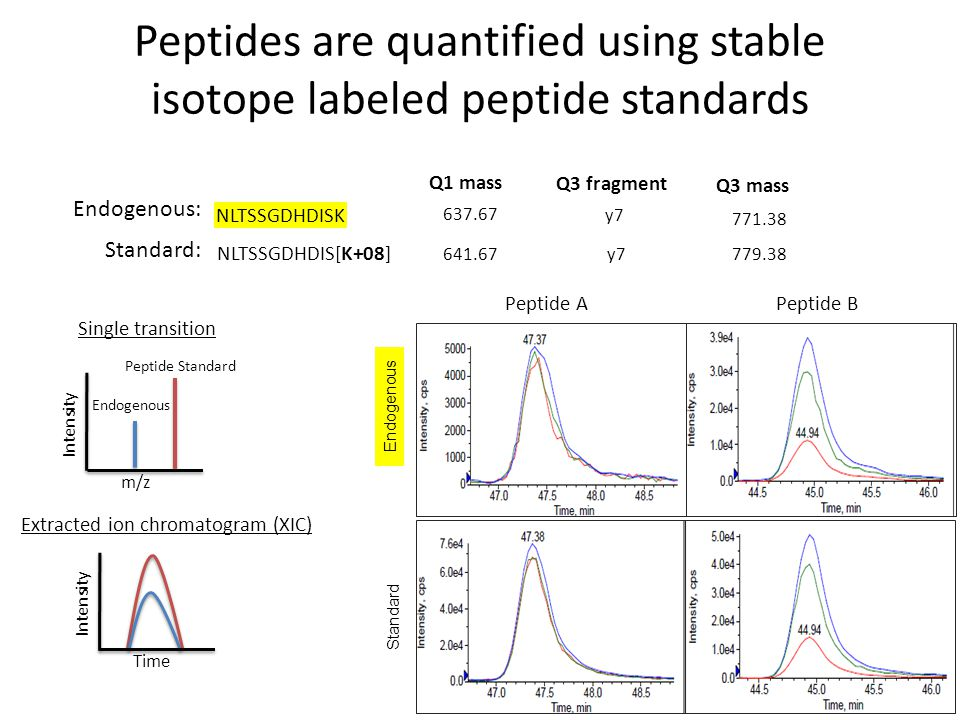 Peptides are quantified using stable isotope labeled peptide standards NLTSSGDHDISK Endogenous: Standard: NLTSSGDHDIS[K+08] Q1 mass 637.67 641.67 Q3 fragment y7 Q3 mass 779.38 771.38 Single transition Intensity Time Intensity m/z Endogenous Peptide Standard Extracted ion chromatogram (XIC) Peptide A Peptide B Overlay: Std & Endog.