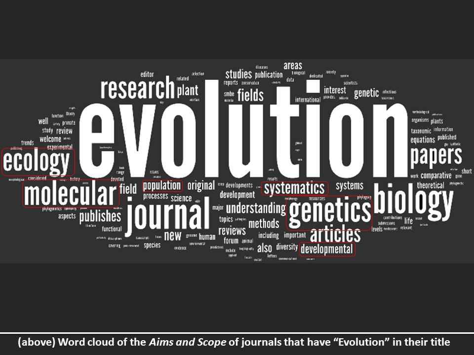 (above) Word cloud of the Aims and Scope of journals that have Evolution in their title