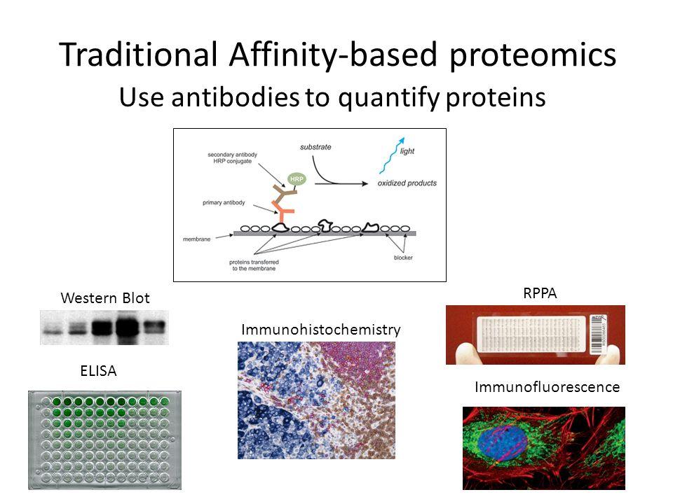 Traditional Affinity-based proteomics Use antibodies to quantify proteins Western Blot RPPA Immunofluorescence Immunohistochemistry ELISA