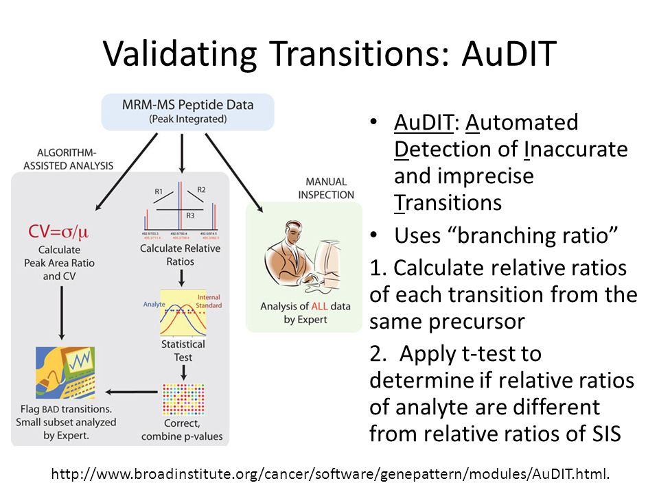 "AuDIT: Automated Detection of Inaccurate and imprecise Transitions Uses ""branching ratio"" 1. Calculate relative ratios of each transition from the sam"
