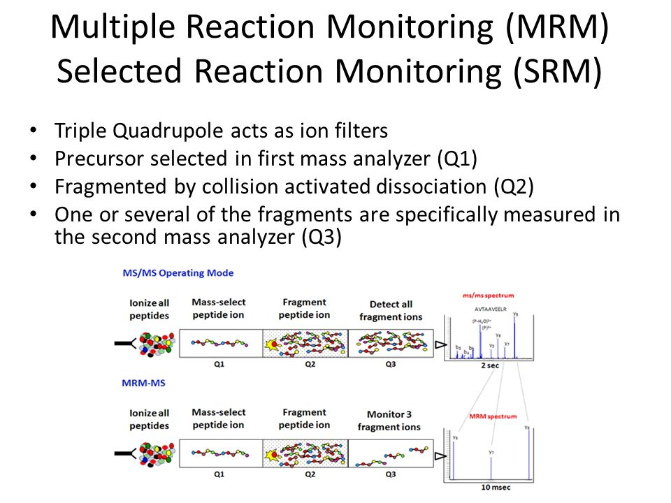 Multiple Reaction Monitoring (MRM) Selected Reaction Monitoring (SRM) Triple Quadrupole acts as ion filters Precursor selected in first mass analyzer