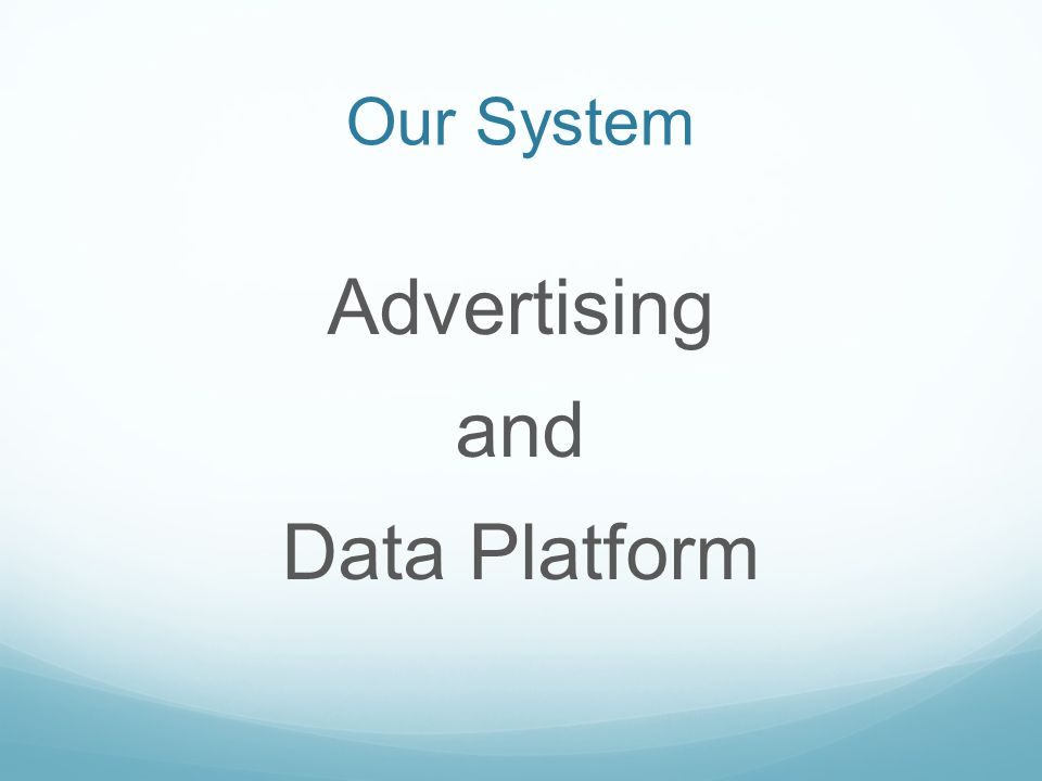 Advertising and Data Platform Our System