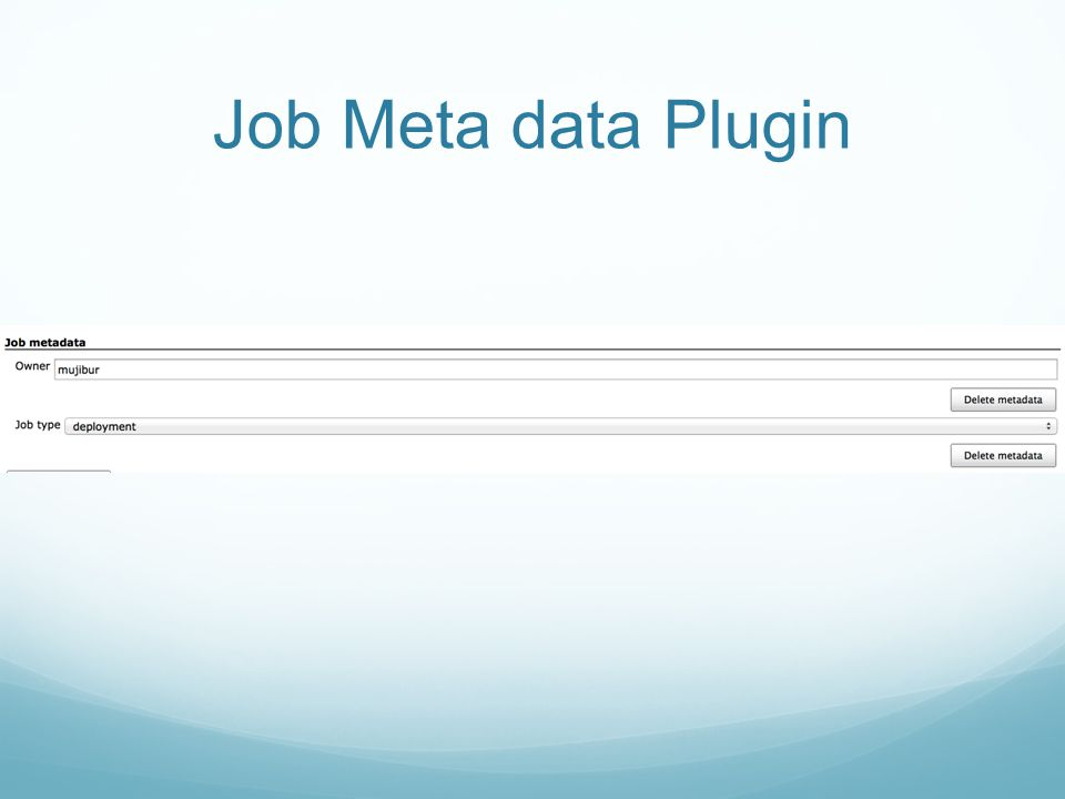 Job Meta data Plugin