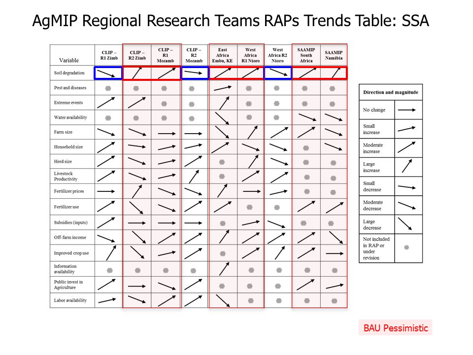 AgMIP Regional Research Teams RAPs Trends Table: SSA BAU Pessimistic