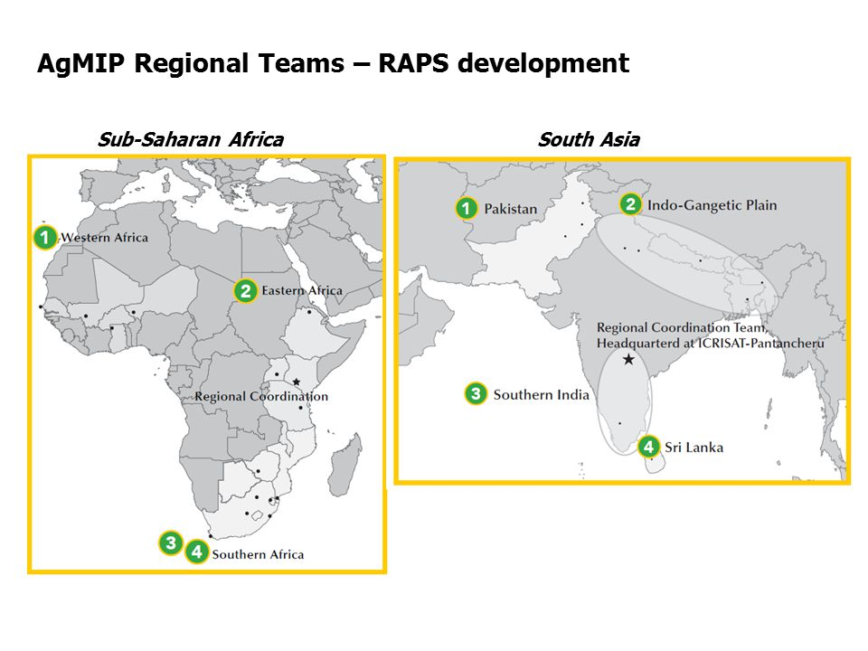 AgMIP Regional Teams – RAPS development Period of analysis: Mid-century Higher level Pathways:  SSP2  No Global RAPs.