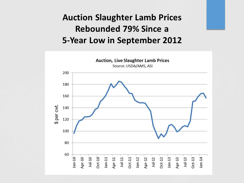 Auction Slaughter Lamb Prices Rebounded 79% Since a 5-Year Low in September 2012
