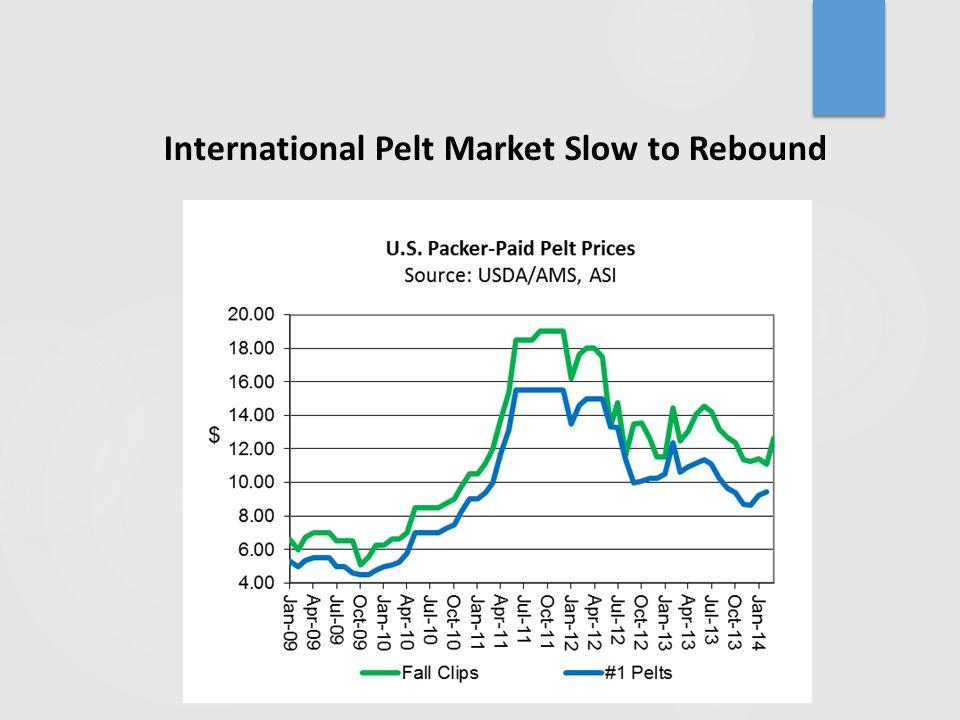 International Pelt Market Slow to Rebound