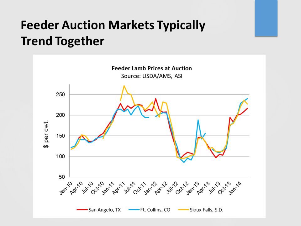 Feeder Auction Markets Typically Trend Together
