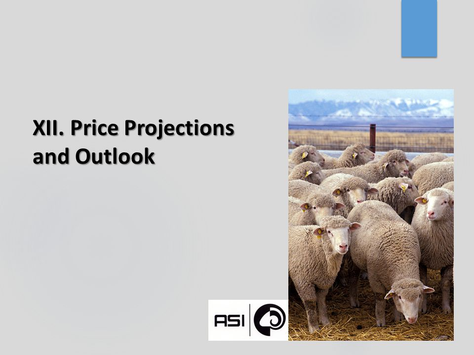 XII. Price Projections and Outlook