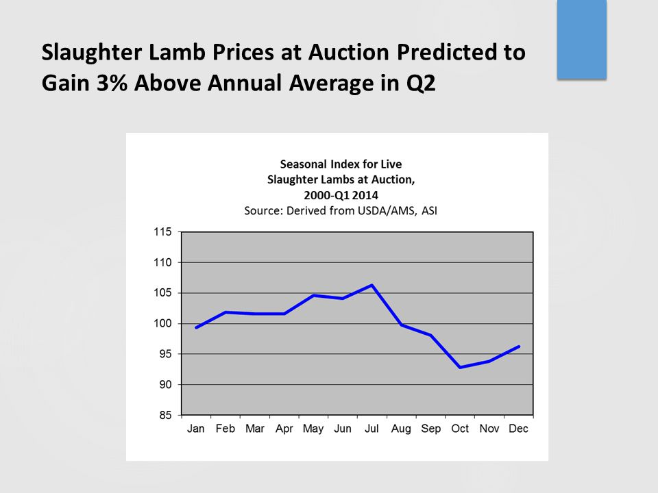 Slaughter Lamb Prices at Auction Predicted to Gain 3% Above Annual Average in Q2
